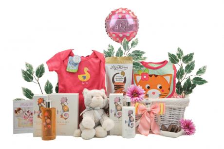 Bathtime Baby Girl Gift Basket